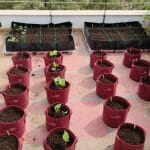 homecrop-terrace-garden-kit-xl